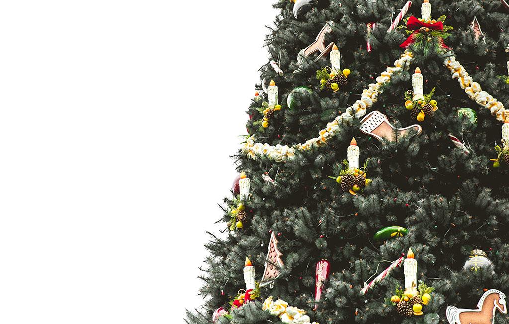 Släng din julgran på innergården